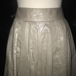 Banana Republic Shimmery Silver Skirt